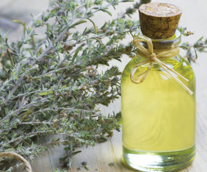 glass bottle of thyme essential oil and bunch of dry thyme on wo